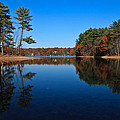 Whites Pond by Corey Sheehan
