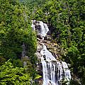 Whitewater Falls by Susan Leggett