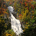 Whitewater Falls With Fall Leaves - North Carolina Waterfalls Series by Matt Plyler