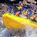 Whitewater Thrill Ride by Thomas R Fletcher