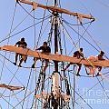 Who Was That Mast Man by Barbie Corbett-Newmin