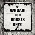 Whoa For Horses Only Sign In Black And White by Lisa Russo