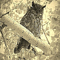 Who's Watching - Sepia by Carol Groenen