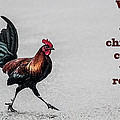 Why Did The Chicken Cross The Road by Photographic Art by Russel Ray Photos