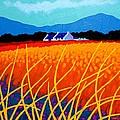 Wicklow Hills by John  Nolan