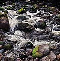 A River In The Wicklow Mountains, Ireland. Vision # 2 by Marcus Dagan