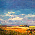 Wide Open Spaces by Fran McDonald Berry
