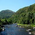 Wide River by Nancie Johnson