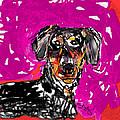 Wiener Dog by Joyce Goldin