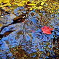 Wiggling Water by Frozen in Time Fine Art Photography
