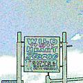 Wild At Heart by Kelly Awad