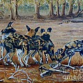 Wild Dogs After The Chase by Caroline Street