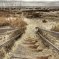 Wild Dunes Beach South Carolina by Dustin K Ryan