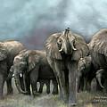 Wild Family by Carol Cavalaris