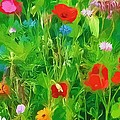 Wild Flower Meadow by Peggy Gabrielson