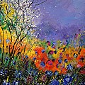 Wild Flowers 4110 by Pol Ledent
