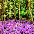 Wild Forest Violets by Georgiana Romanovna