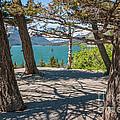 Wild Goose Island 2 by Al Andersen