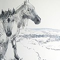 Wild Horses Drawing by Mike Jory