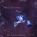Wild Iris Inspirational Print by Gwen Gibson