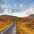 Wild Landscape Of Connemara Ireland by Mark Tisdale