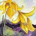 Wild Lilies by Bonnie Fernandez