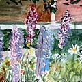 Wild Lupine In Barton Vermont by Donna Walsh