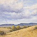 Wild Montana Skies by Bonnie Bowne