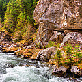 Wild Mountain River by Pati Photography