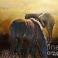 Wild Mustangs In The Mist by Michael Kennedy