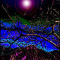 Wild Plum In New World Dawn by Susanne Still