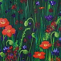 Wild Poppies by Anastasiya Malakhova