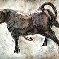 Wild Raging Bull by Daniel Hagerman