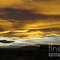Wild Skies  by Jeff Swan