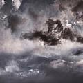 Wild Skies by Leland D Howard