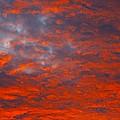 Wild Sky by Greg Wells