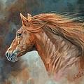 Wild Stallion by David Stribbling