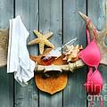 Wild Summer Cottage Weekend by Sandra Cunningham