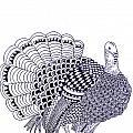 Wild Turkey by Sandy Rosen