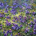 Wild Violets  by Ylli Haruni