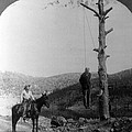 Wild West. Sheriff On Horseback Looking by Everett