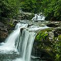 Wildcat Falls In Joyce Kilmer Wilderness by Todd Ransom