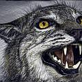 Wildcat Ferocity by Daniel Hagerman