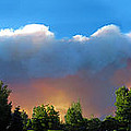 Wildfire Coming by Ric Soulen