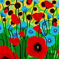 Wildflower Fiesta by Linda Rauch