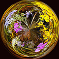 Wildflower Paperweight by Gary Holmes