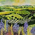 Wildflower Ridge by Allan P Friedlander