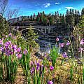 Wildflowers And Old Bridge by Derek Haller