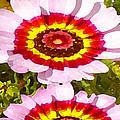 Wildflowers Tall by Amy Vangsgard