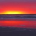Wildwood Sunrise Dreaming by David Dehner